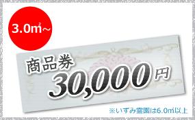 30000円クーポン