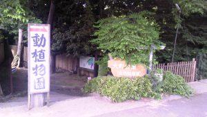 墓参の帰りにちょっとお散歩~市川市「大町公園」
